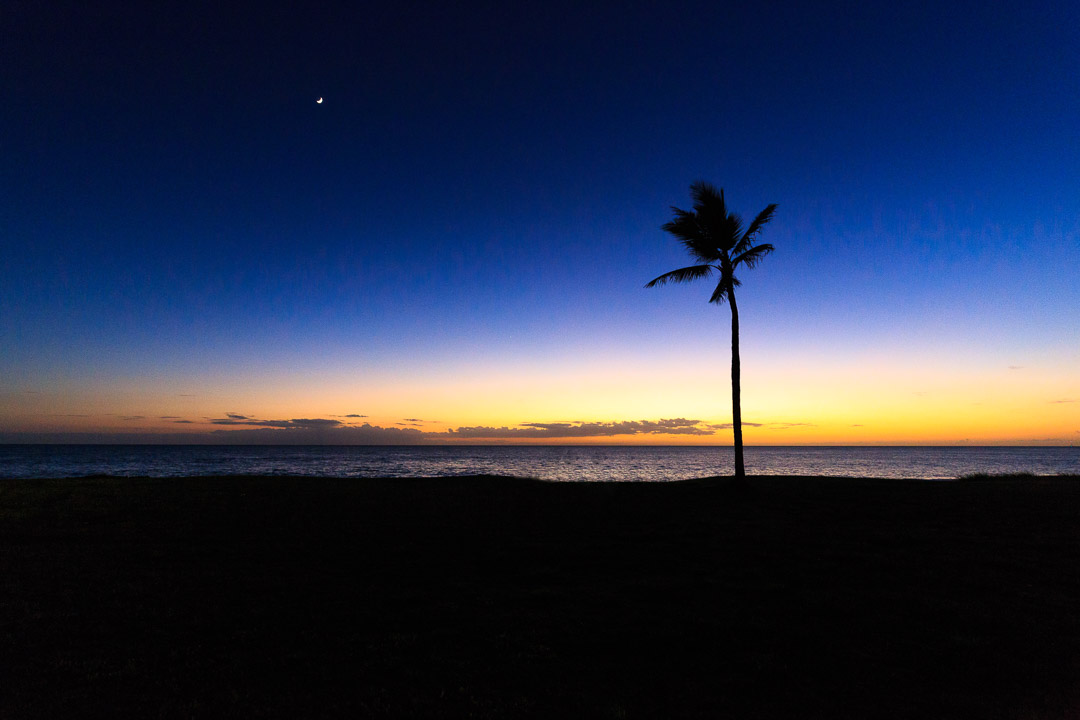 Oahu-261-Bearbeitet_PS